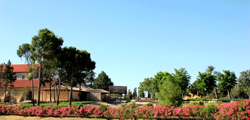 Un espacio rodeado de jardines